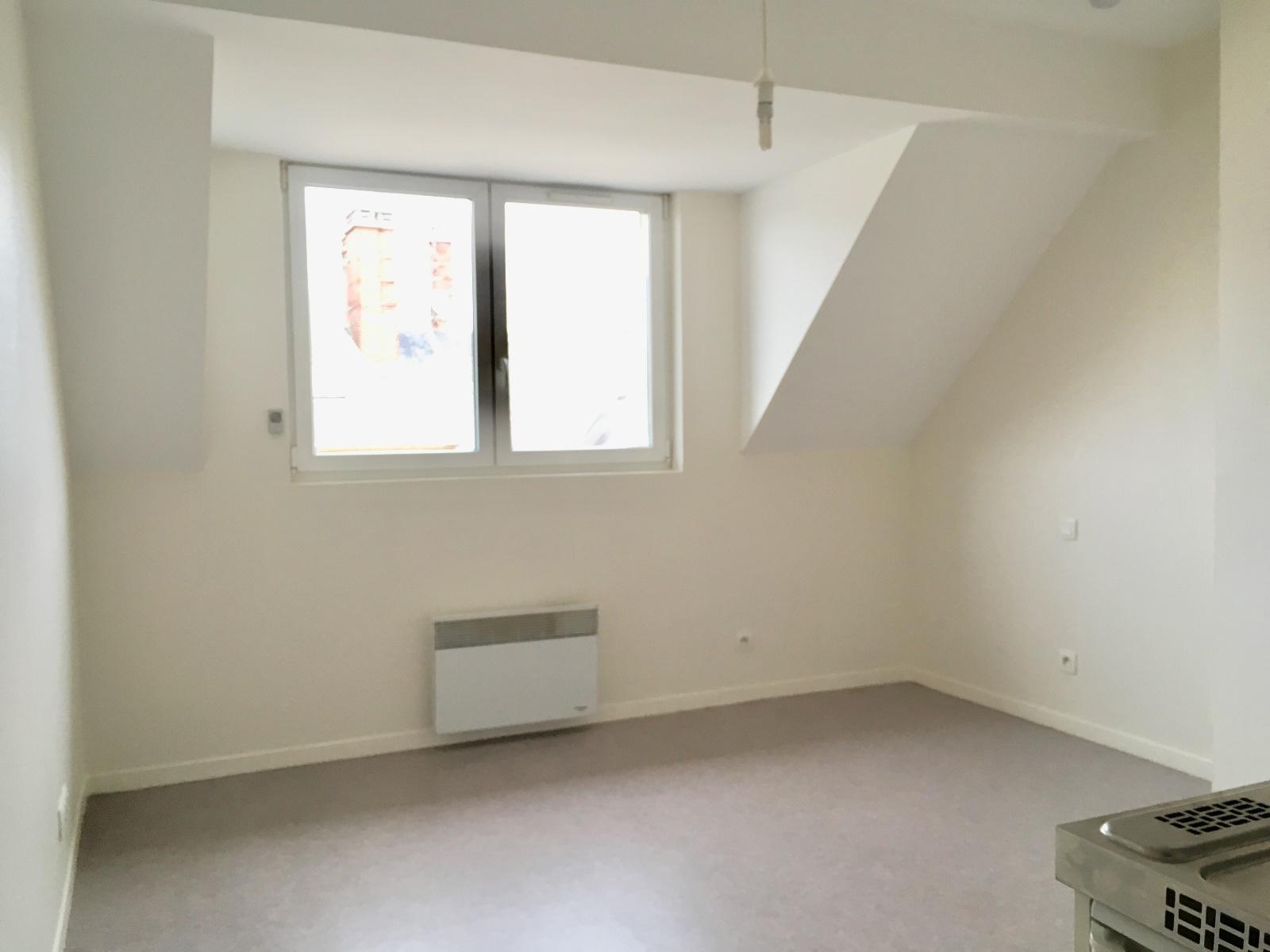 location rue pietonne 25 m2 moderne comprenant s jour avec. Black Bedroom Furniture Sets. Home Design Ideas